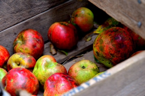 Apple Strudel | Apple Dessert