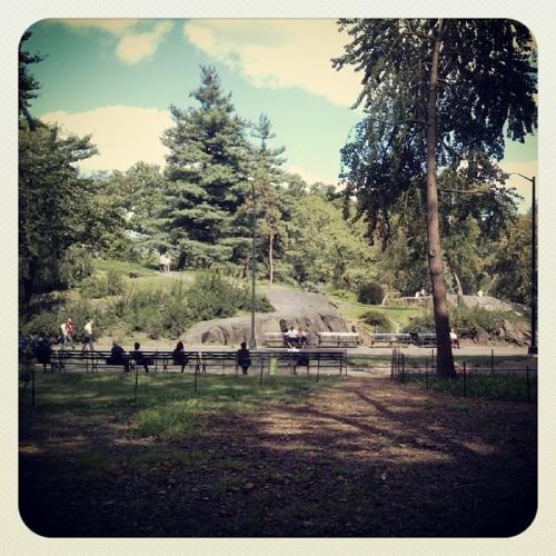 Instagram photo of park scene