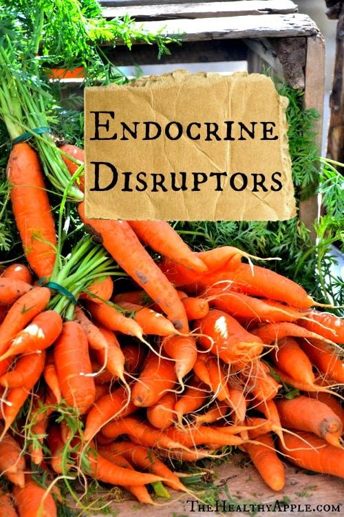 Endocrine-Disruptors