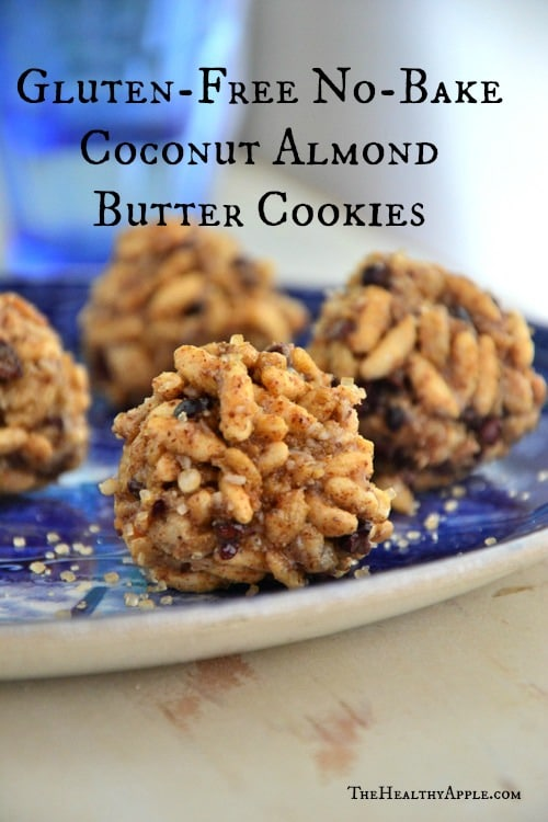 Gluten-Free No-Bake Coconut Almond Butter Cookies