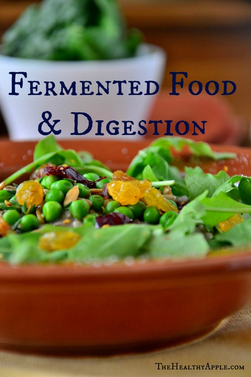 fermented-food-and-digestion