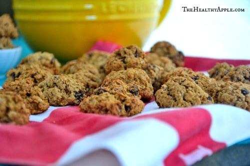 Cranberry-Coconut-Chocolate-Chip-Cookies {Gluten-Free, Sugar-Free, Dairy-Free, Soy-Free}-Recipe (1)