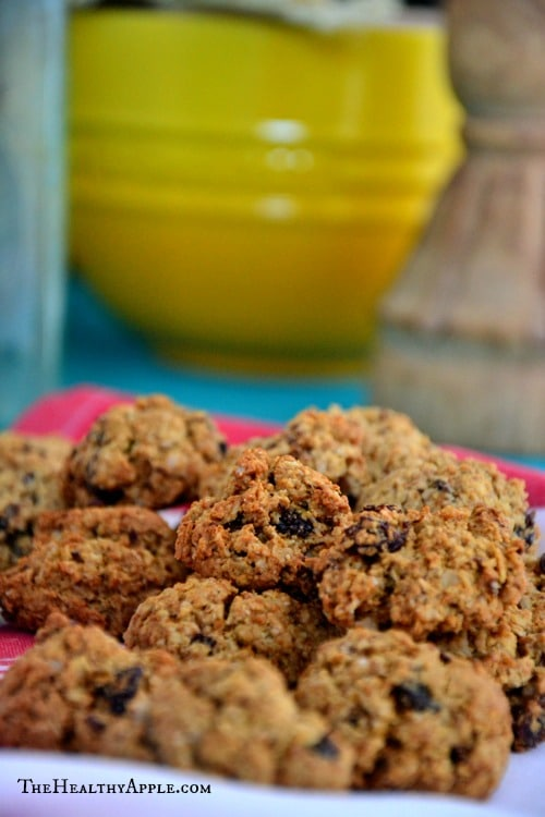Easy-Cranberry-Coconut-Chocolate-Chip-Cookies {Gluten-Free, Sugar-Free, Dairy-Free, Soy-Free}