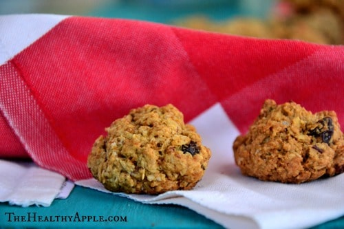 Healthy-Cranberry-Coconut-Chocolate-Chip-Cookies {Gluten-Free, Sugar-Free, Dairy-Free, Soy-Free}