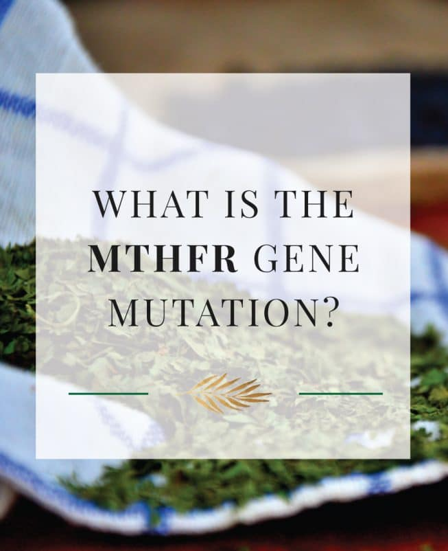 What is The MTHFR Gene Mutation?