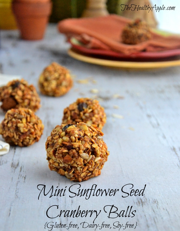 mini-sunflower-seed-cranberry-balls