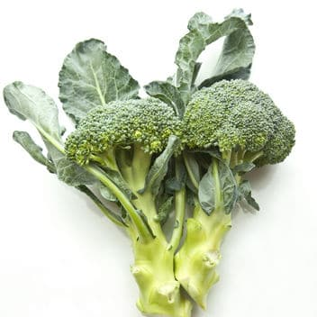 broccoli-sunscreen-skin-cancer-study-square-w352
