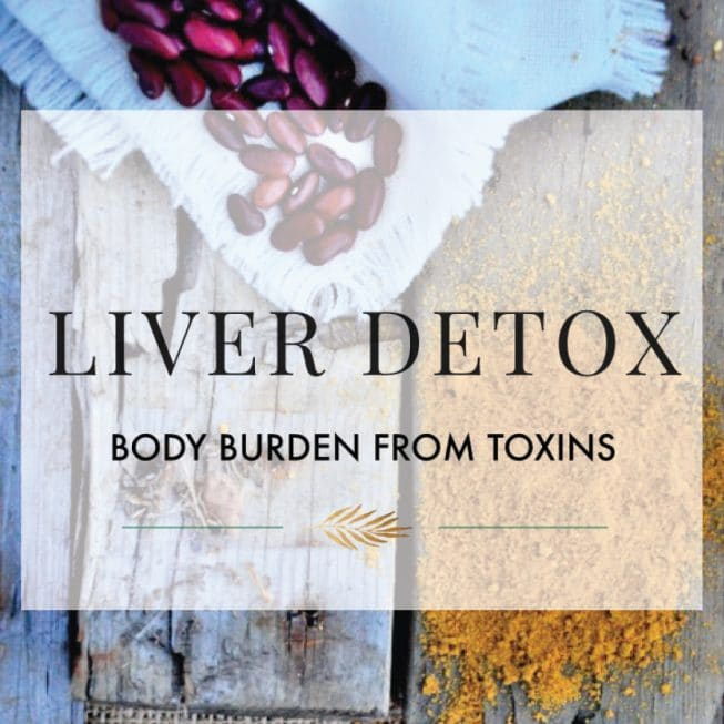 Body Burden from Toxins