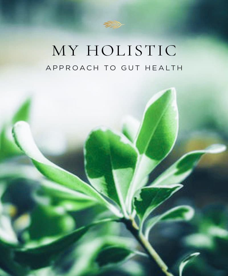 My holistic approach to gut health.